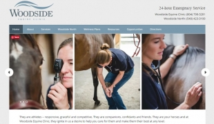 Equine Clinic Website