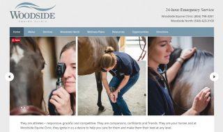 Equine Clinic Website